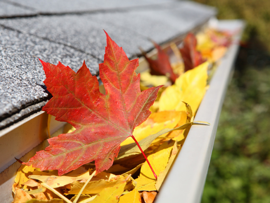Save on cleaning fees with gutter guards